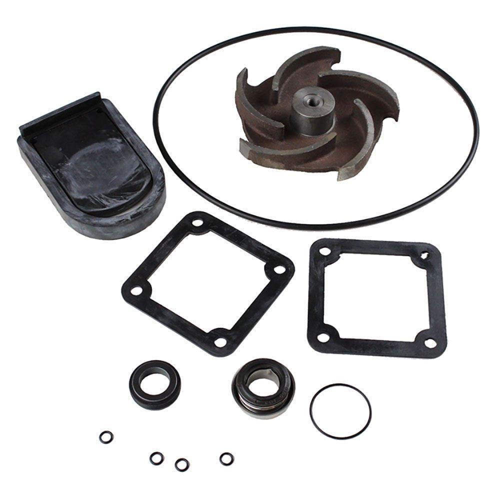 Cast Iron Pump Rebuild Kit (2013-2016)